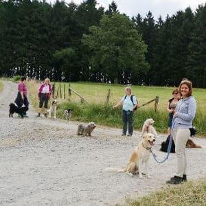 Pfötchentouren - Hundewanderungen im Oberbergischen Land
