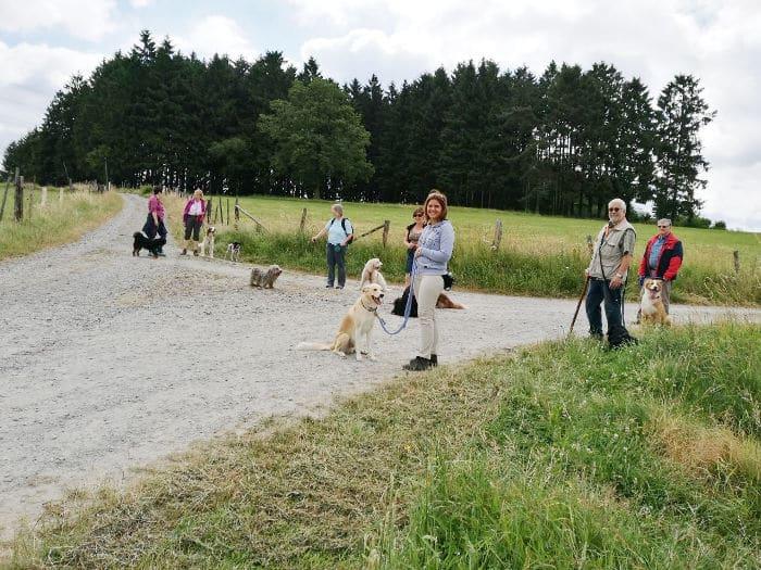 Wanderung mit Hunden zur Ruine Eibach