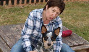 Australian Cattle Dog Lacey
