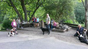 Wandergruppe mit Hunden