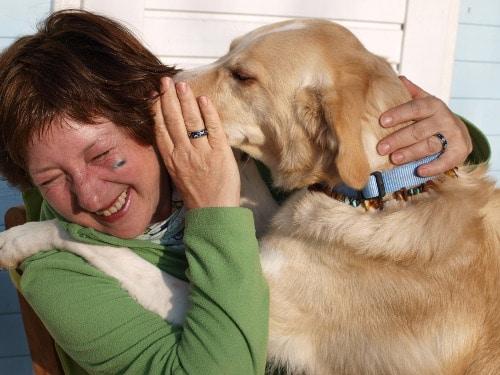 Vom Umgang mit Hundetrainern